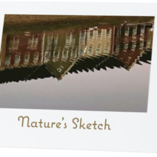 Nature's Sketch Folded Notecards Dhruti Rathi Studio