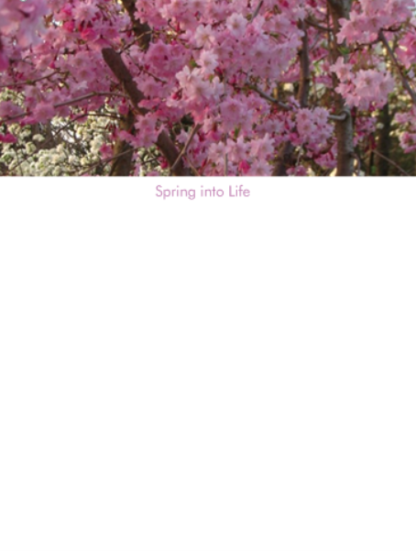 Dhruti Rathi Studio - Spring into Life Magnetic Notepad